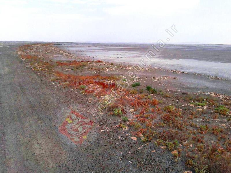 سنگفرش کهن در دل دریاچه نمایان شد! / دؤشَمه، یادگاری از مسافران جزایر ارومیه