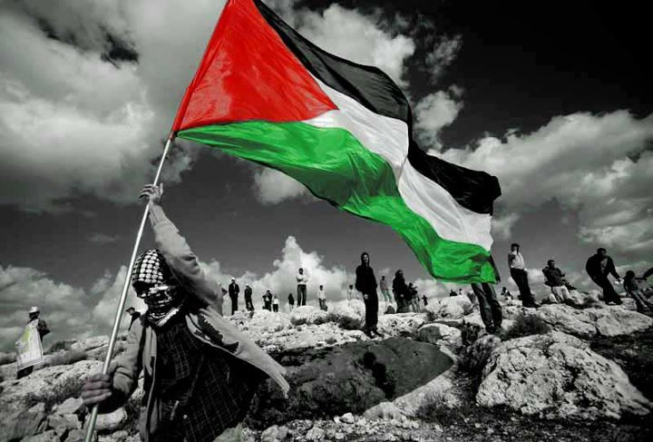 جوان ها به دنبال نقش آفرینی برای آزادی فلسطین با استفاده از فضای مجازی باشند